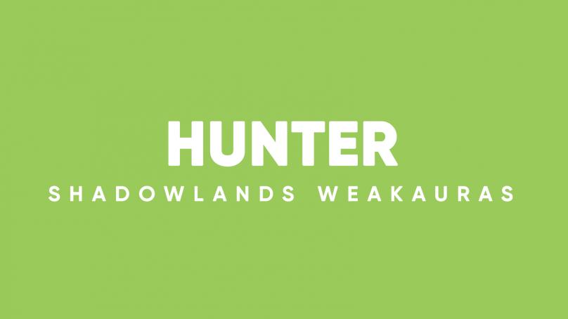 Hunter WeakAuras for World of Warcraft: Shadowlands