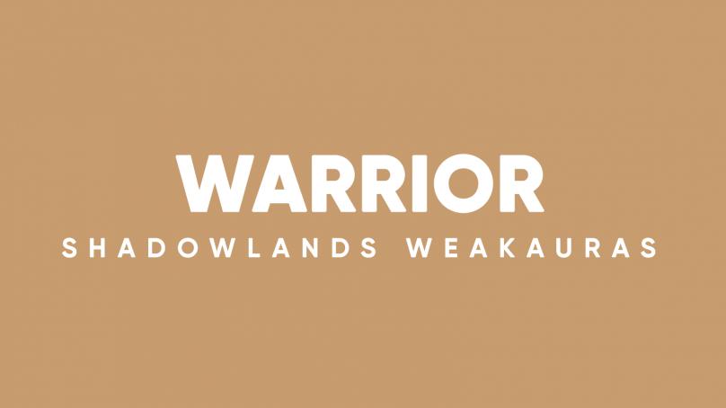 Warrior WeakAuras for World of Warcraft: Shadowlands